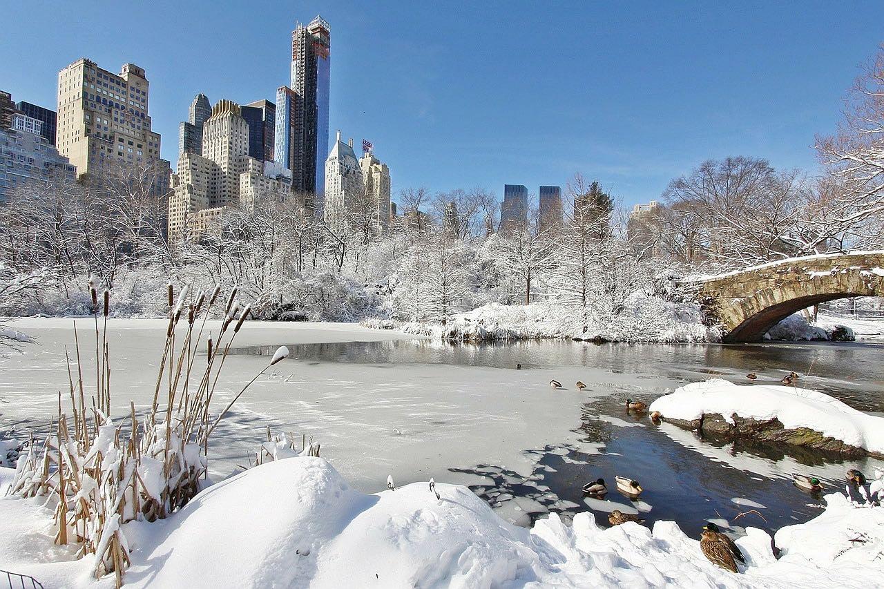 Un Noël inoubliable à New-York