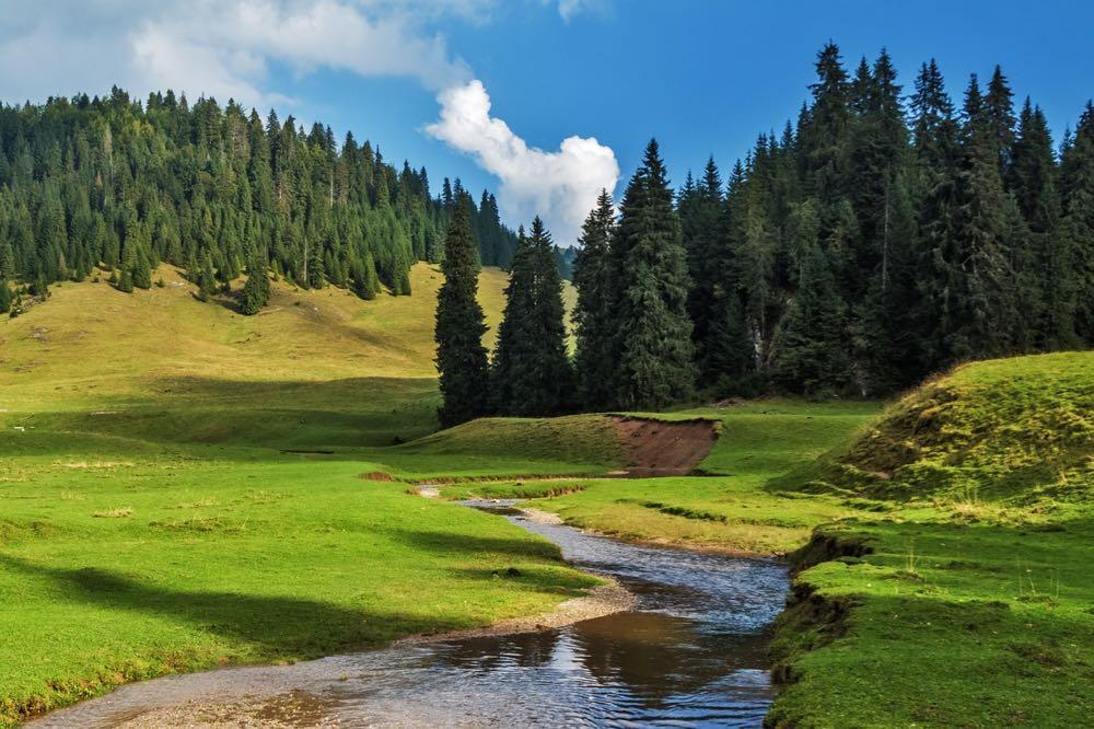 Road trip en Transylvanie